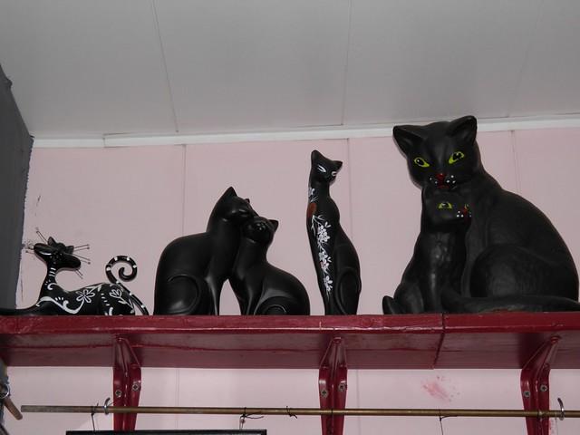 Cat Museum (6/6)