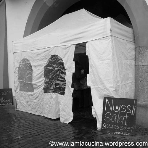 Luzern Winter-2013 01 19_9314