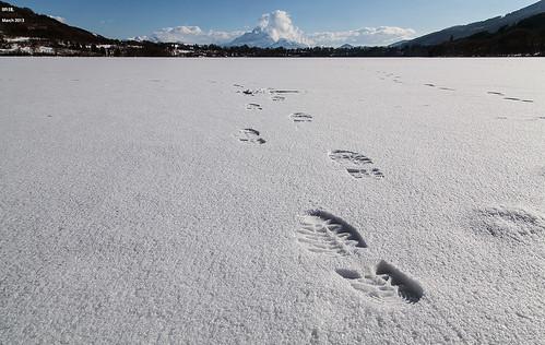 Walking On The Frozen Lake by LilFr38
