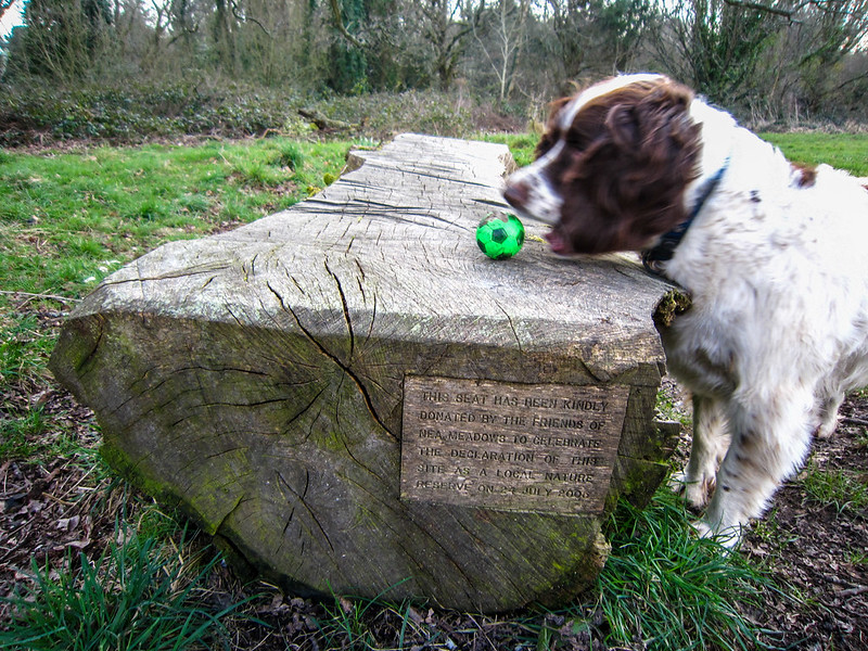 Seat with inscription ... and Max!