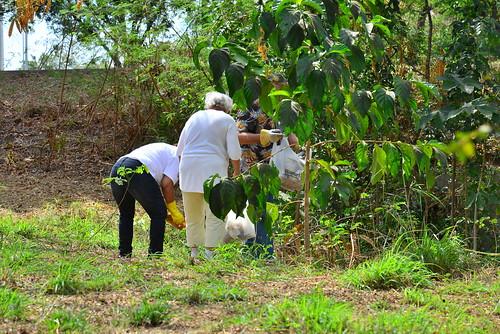 La Comunidad rescatando al Bosque Urbano el Samán by Remmanuelli