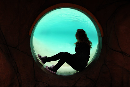 Harriet underwater