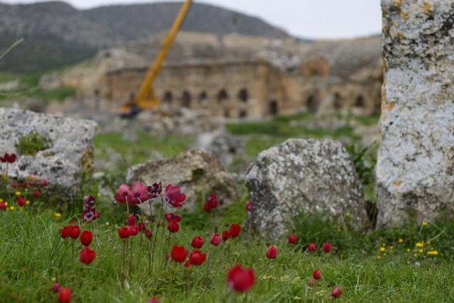 希拉波利斯古城 (Hierapolis) 位在棉堡石灰棚區的山頂,範圍廣大,依坡而建,西南側與石灰棚區相接處設有博物館,需額外門票 5 TL。東北側有一保存較佳的劇場,正在進行整修工程中。野地裡遍佈紅、黃色小花,鮮豔奪目。