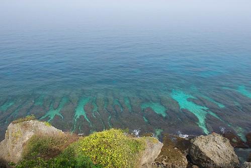 coral reefs just off the coast of Xiaoliuqiu.