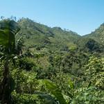 Guatemala,  Semuc Champey 03