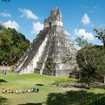 Guatemala, Ruinas de Tikal 41