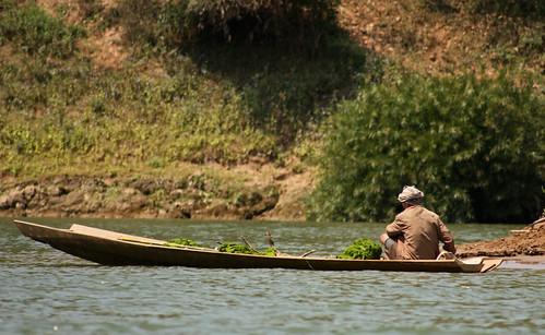 harvesting river weed