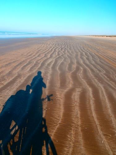 Doñana. Huelva 2012 (2)