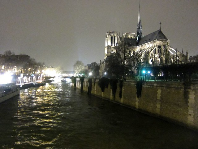 Notre-Dame de Paris on the Seine