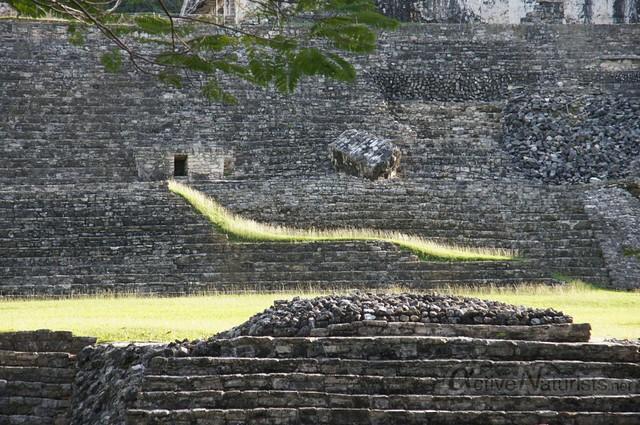 naturist 0019 Palenque, Chiapas, Mexico