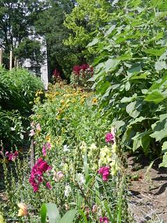 gardens 085
