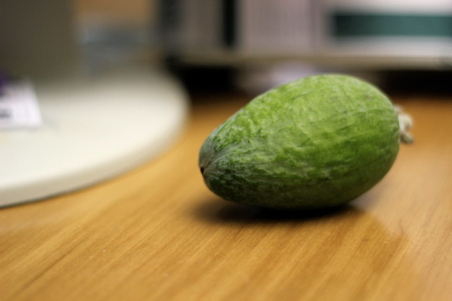 Tuesday: the feijoa that haunted my day