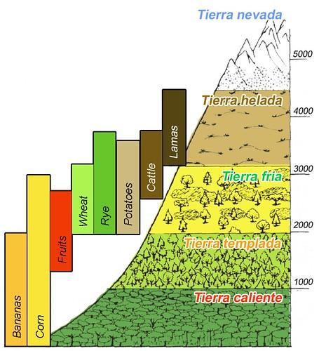 Pisos altitudinales
