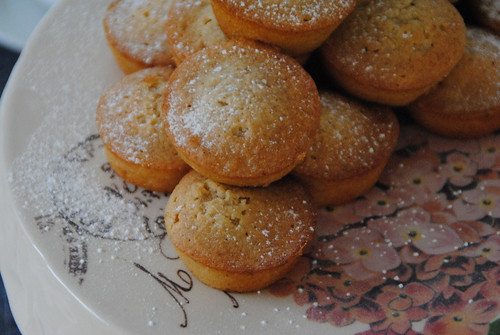 Madeleine french pastry