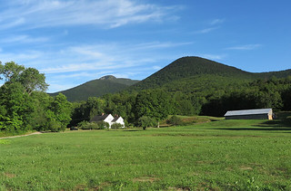 Mt Whiteface Farm