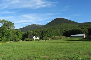 Mt Whiteface Farm
