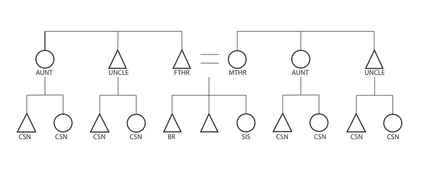 Classificatory And Descriptive Systems Of Kinship The Human Family