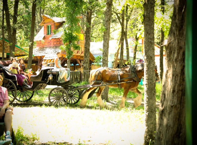 275/ BRIDE ARRIVAL ON HORSE DRAWN CARRIAGE