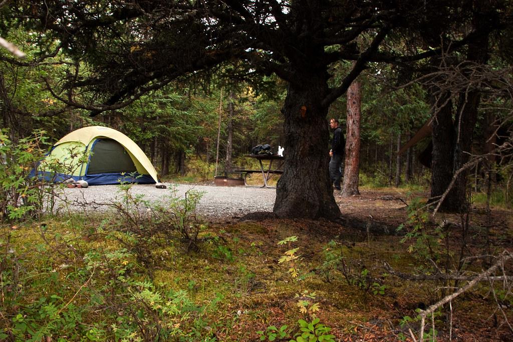 Teklanika Campsite