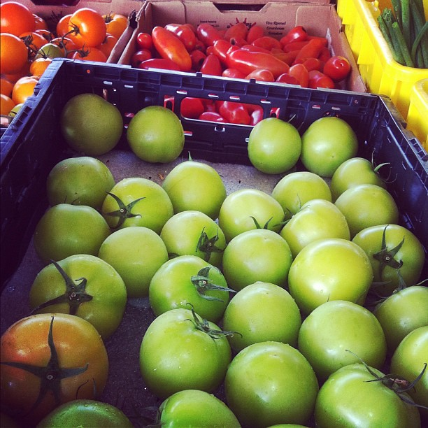 #GreenTomatoes at the #FarmersMarket