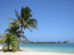 USA_2012_01_Hawaii_14