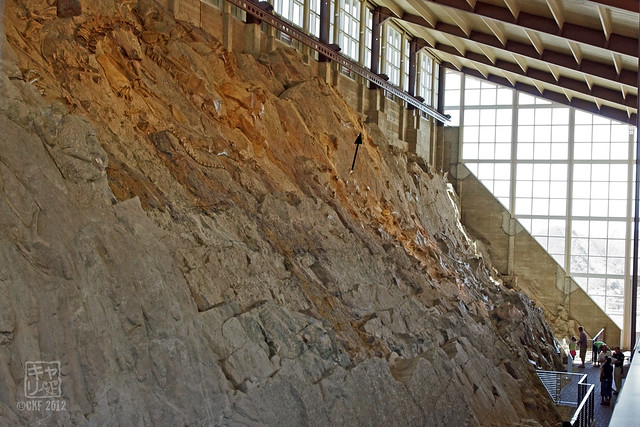 Quarry Exhibit Hall