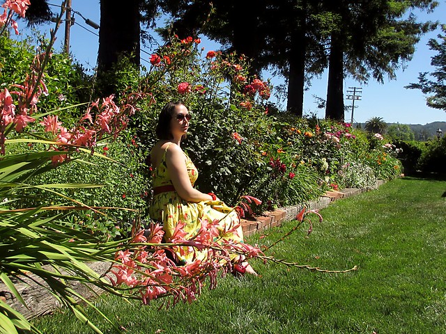 Amidst the flowers at Dry Creek Vineyard. Photo by Pat Zimmerman.