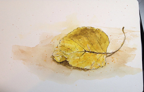 Leaf in ink and watercolor