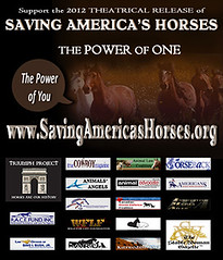 SavingAmericasHorsesReleaseCampaignBNR300x351_9412