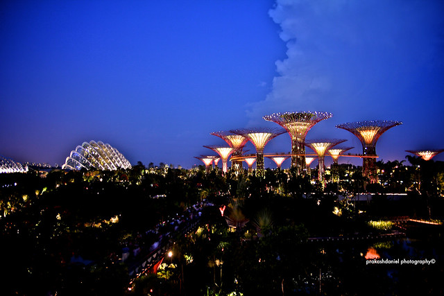 Singapore Escapades