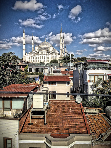 Istanbul - Blue Mosque (Ferman Hotel rooftop)