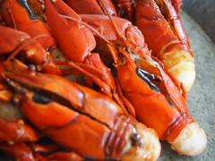 Detail: Crayfish