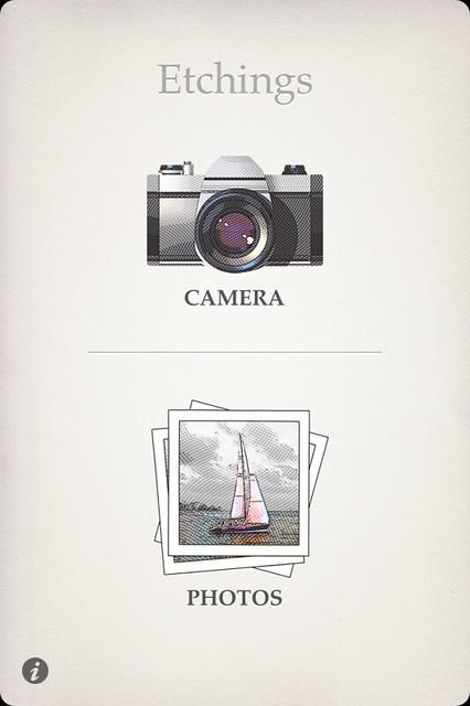 Camera Roll-3562