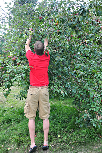 Joel Picking Apples
