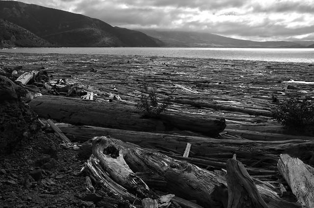 Spirit Lake Detritus