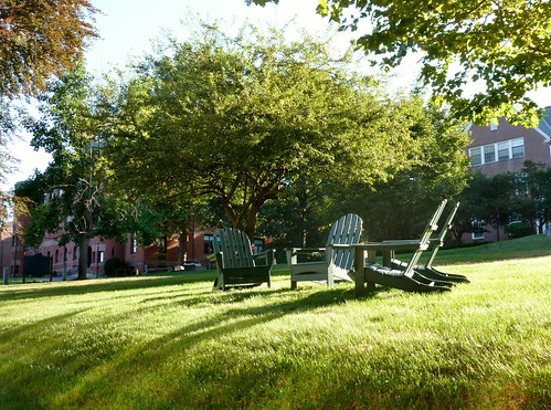 Adirondack chairs in morning light