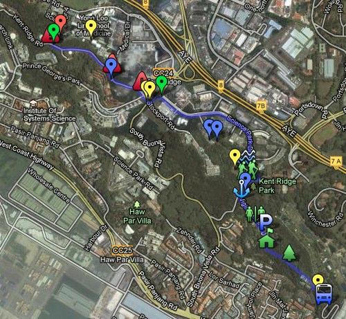 LSM1103 Kent Ridge walking route - Google Maps