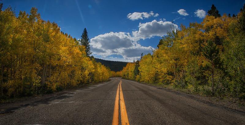 Fall Road-2