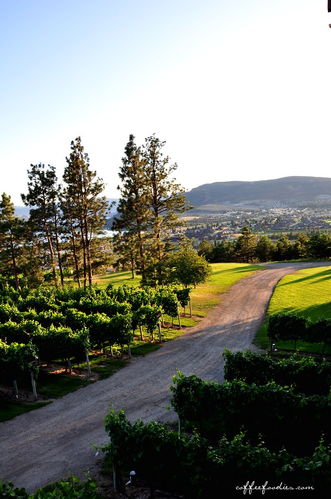 Mission Hill Winery SUMMERLAND BC