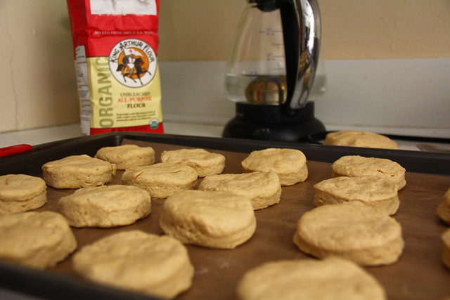 Whole Wheat Biscuits - just before baking (c) Petra Gaum