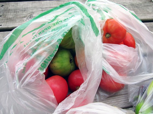 Two bags of tomatoes, some red and some green.