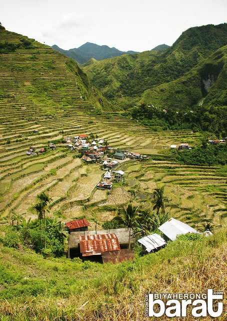 Amphitheater shaped Batad Rice Terraces Ifugao