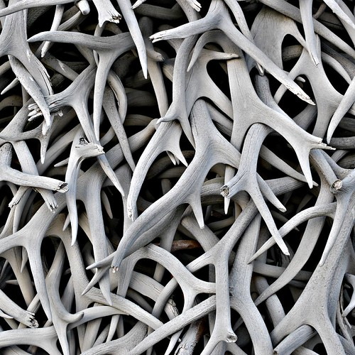 Stack o' Antlers