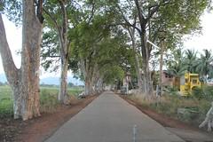 Ambasamudhram Aathu Salai