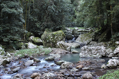 Stream at Natural Bridge by holidaypointau