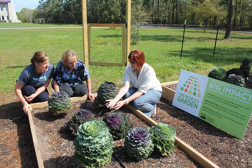 Christine Coker (right), a Mississippi State University horticulture professor and NRCS Earth Team volunteer, teaches Leigh Anne Leech and Debra Veeder about irrigating raised garden beds.