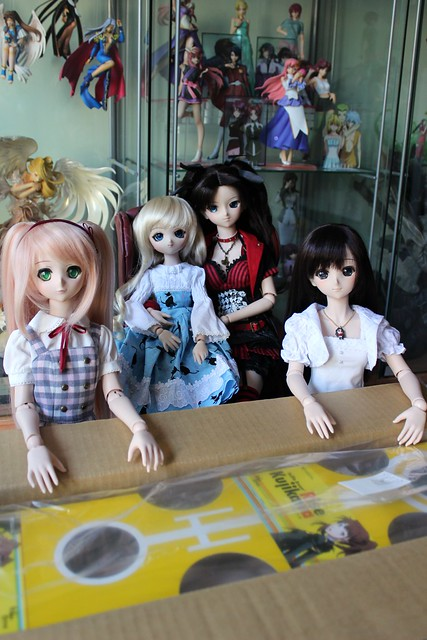 Dollfie Dream Rise Kujikawa - box opening