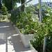 Terrasse des Frouchettes