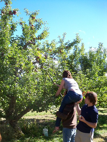 reaching the high apples