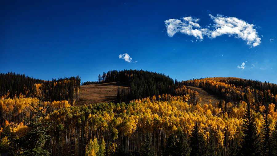 Fall in Vail 3
